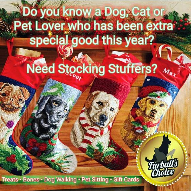Hard to buy for animal lover??? Gift ideas?? Stocking stuffers?hellip