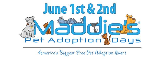 logo-maddies-654-241
