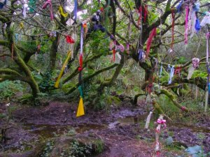 clouties at Madron Well in Cornwall healing wells holy wells