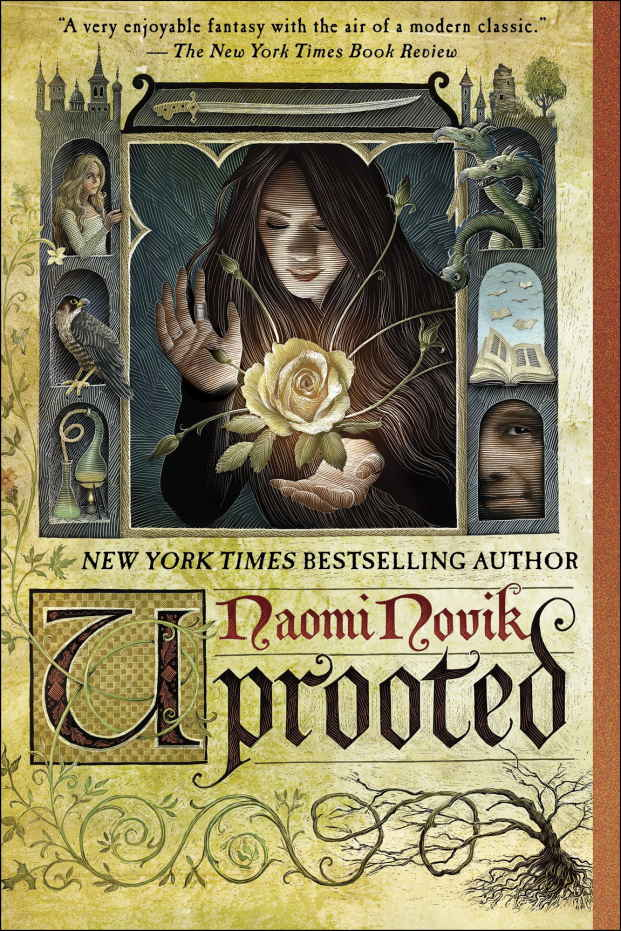 Pooks Recommends Uprooted by Naomi Novik | Fury Triad