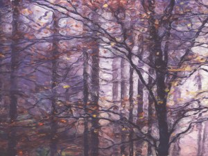 woodland murals