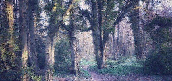 Digital woodland scene