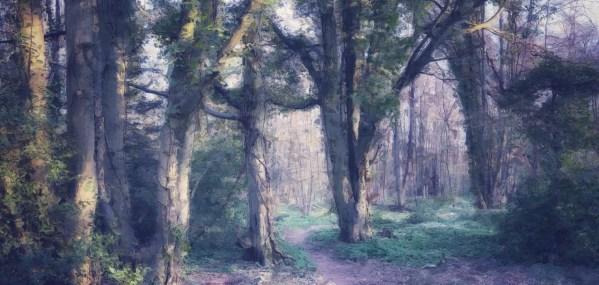Digital woodland scene
