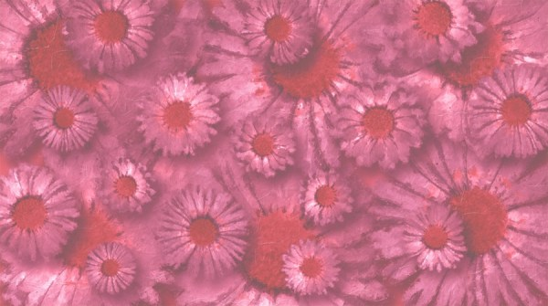 floral wallpaper pink daisy