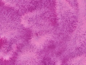 monster fur wallpaper mural pink