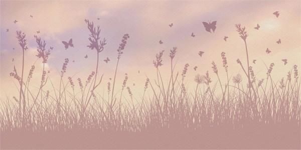 darl butterfly field mural wallpaper