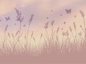 darl butterfly field mural wallpaper