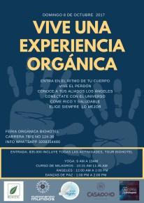 vive una experiencia organica (5)