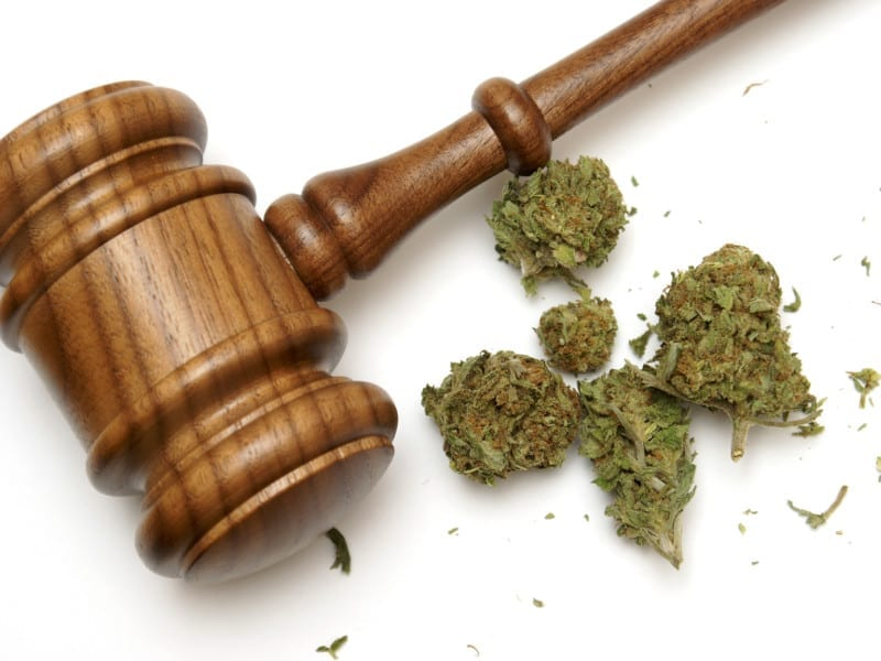 Legal Update on Marijuana and Hemp Law Enforcement