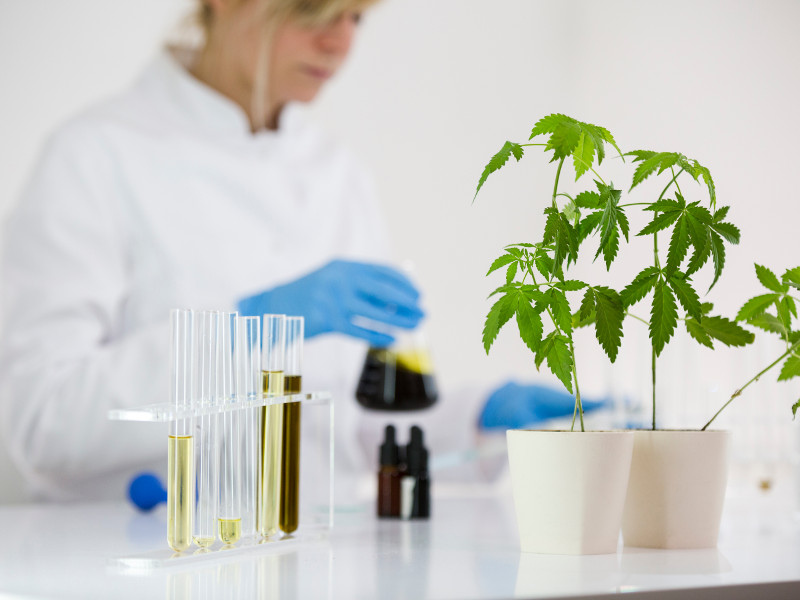 Fusion CBD—Raising the Standards of an Industry