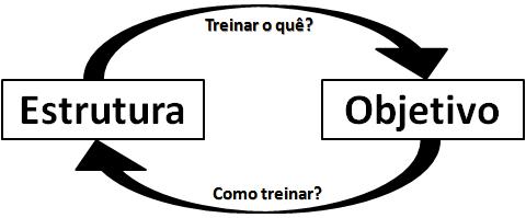 Estrutura e objetivos (figura 1)