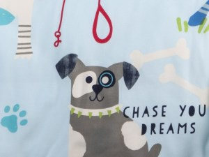 Chase Your Dreams Full Fulton Cover