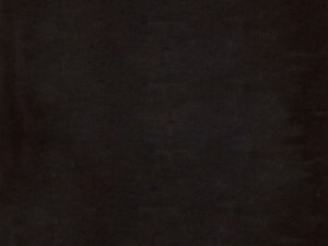 Padma Night 22'' Bolster Pillow Set
