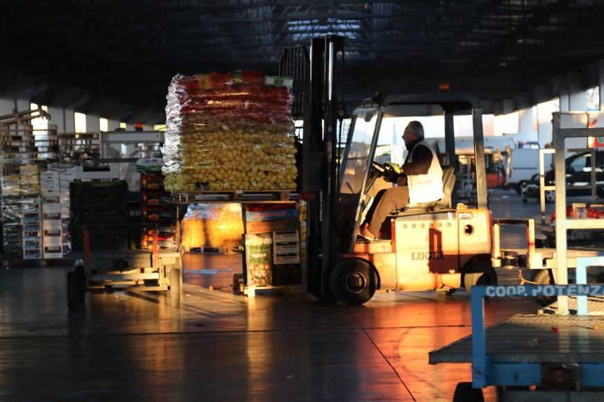 Spostamento di casse nella tettoia all'aperto, foto di Camilla Cupelli