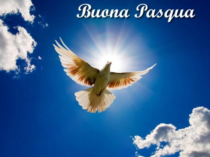 Pasqua colomba