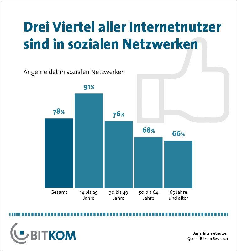 Nutzung soziale Netzwerke Deutschland 2013