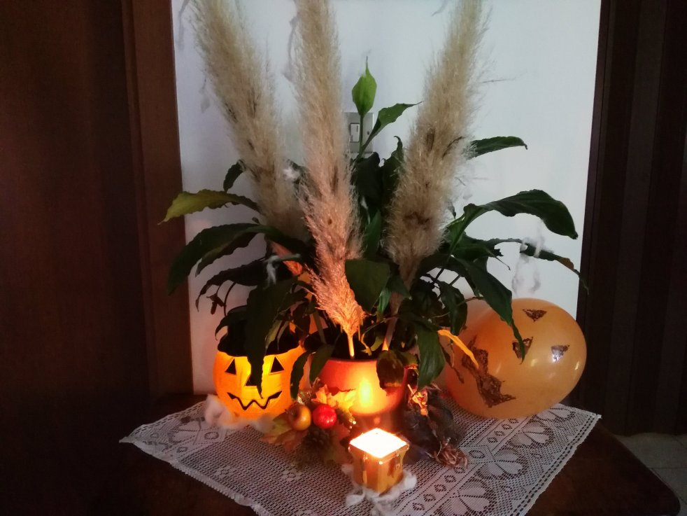 decorazione halloween 2017