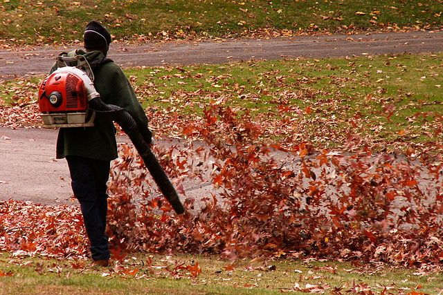 Best commercial-backpack-blower