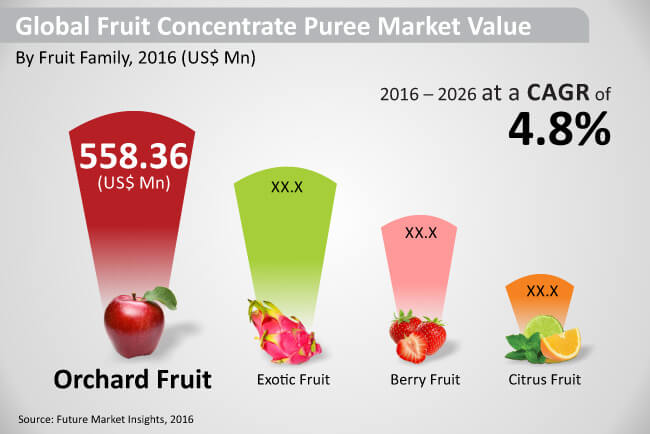 global fruit concentrate puree market
