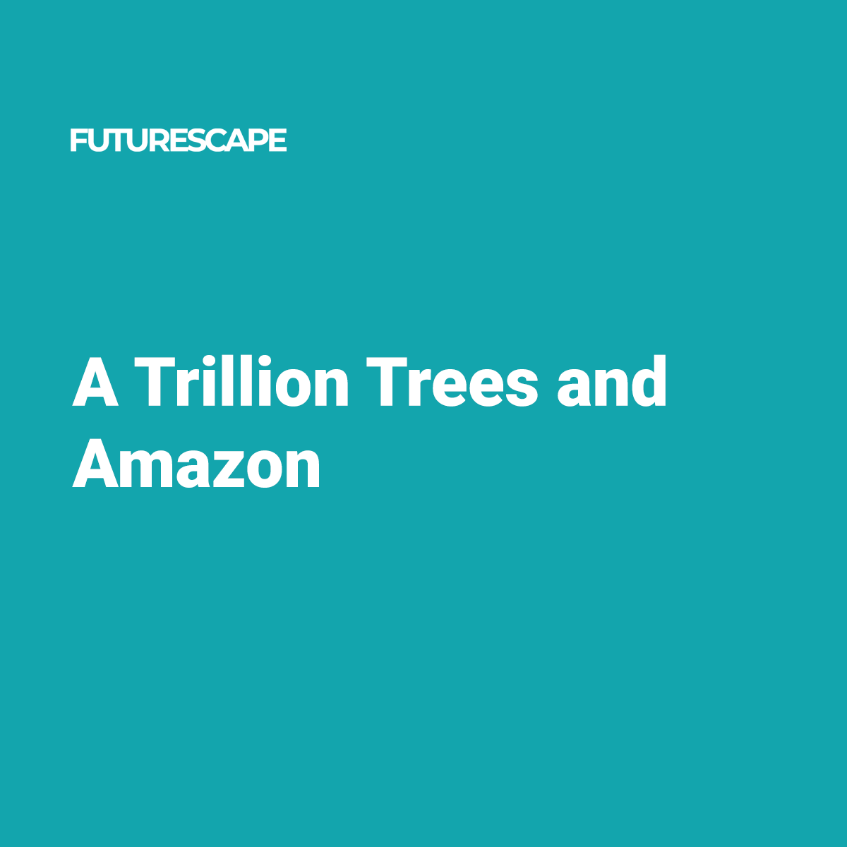 a-trillion-trees-and-amazon_twitter-social-card