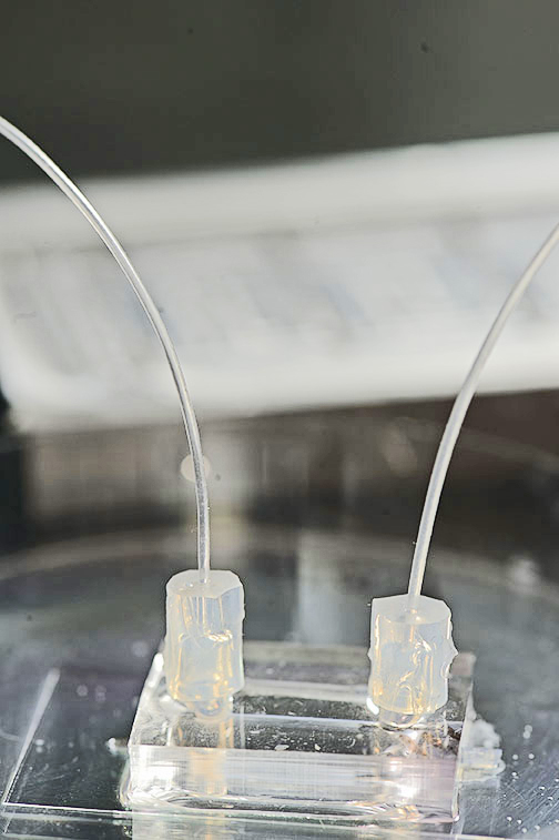 cancer lab chip