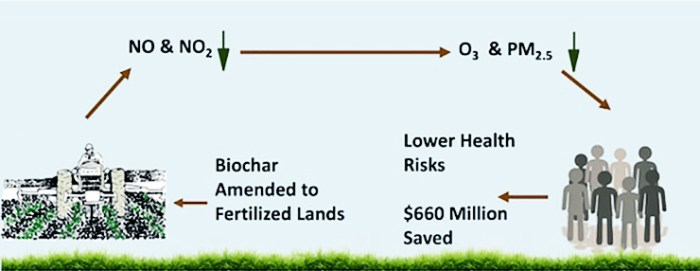 biochar illustration