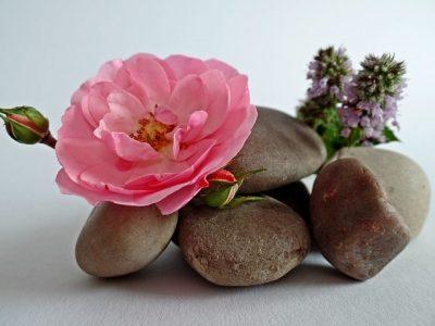 石とピンクの花のバランス