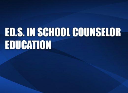 edsinschoolcounseloreducation