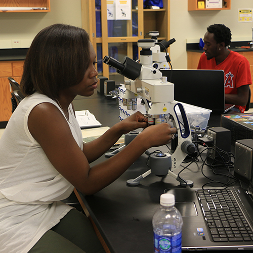 Biology students selected for forensics summer research experience