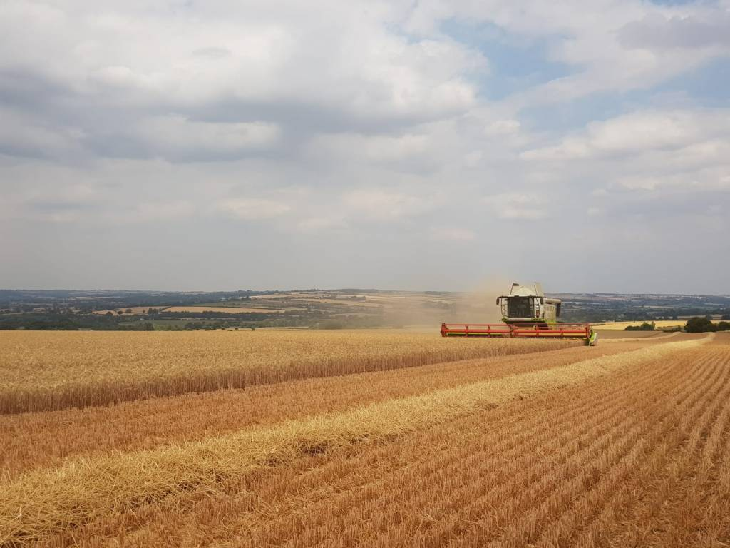 Combine harvester on the Swinbrook Estate