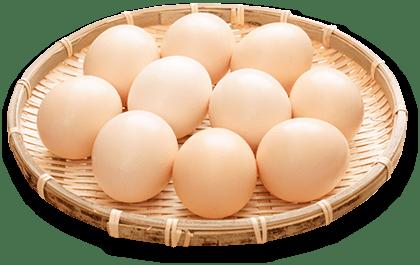 鶏卵業界の厳しさ