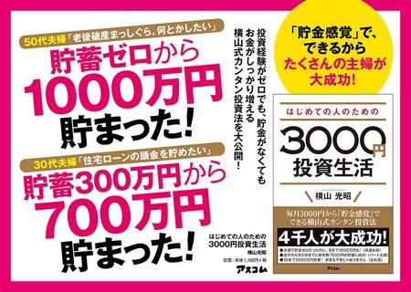 3000Yen_A4Panel