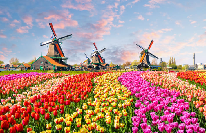 オランダとかいう欠点のない国の魅力