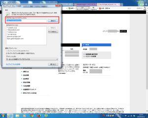 OANDA Japanを許可サイトに設定
