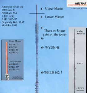 cedar-infograph