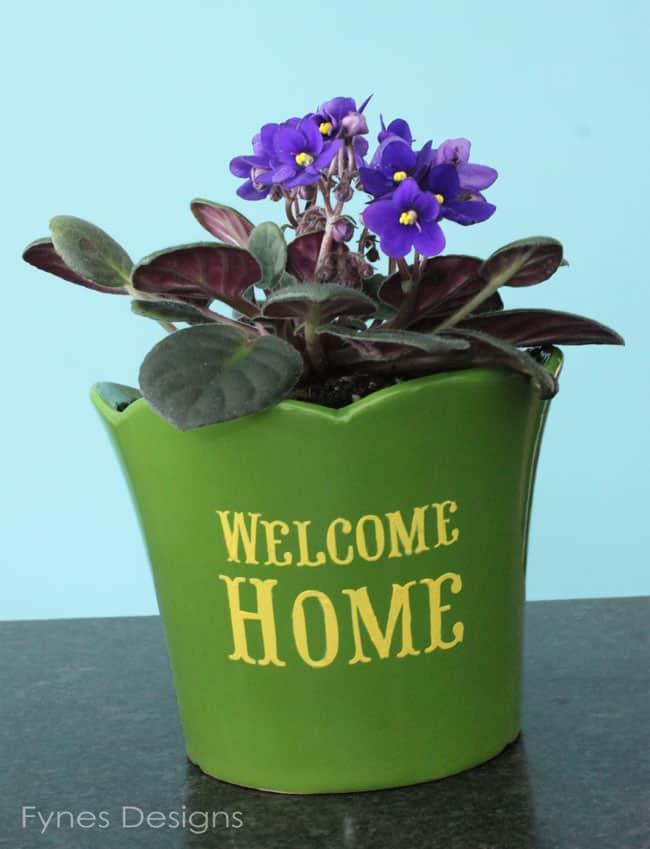 plant-pot-fynes-designs