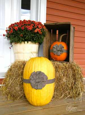 fall-pumpkins