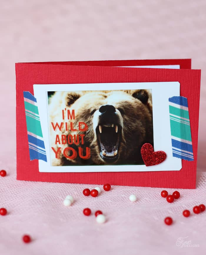 I'm Wild about you Valentine with Instax mini camera