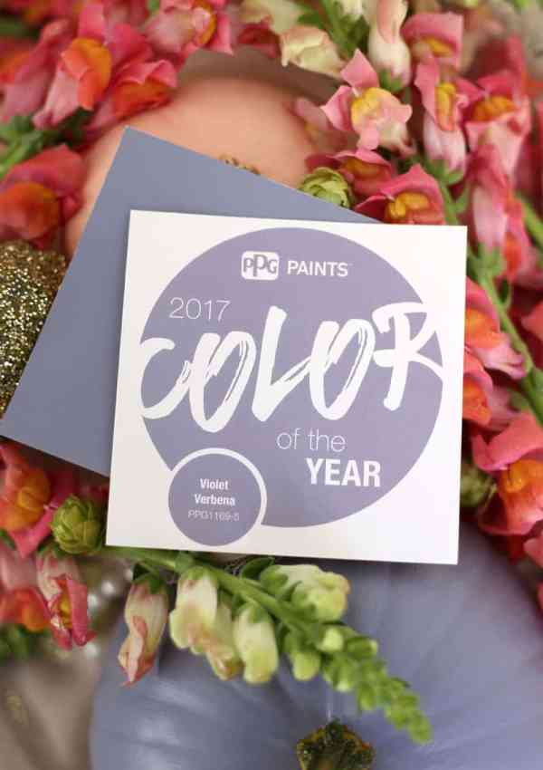 Voice of Color 2017 Color of the Year