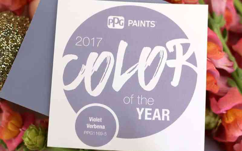 Violet Verbena PPG Voice of Color, 2017 Color of the Year