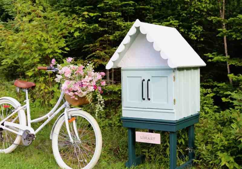 little free library created by Fynes Designs
