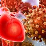 Cât de tare poate dăuna inimii noul coronavirus / Cardiologi germani: Este mult mai mult decât ne-am temut