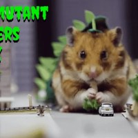 All New Level Of SQUEEEE When Mutant Hamsters Attack!