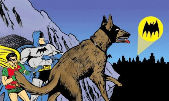 Apparently, even the dog had a secret identity that needed protecting.