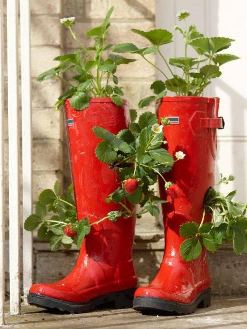 Cizme rosii reciclate in ghivece minunate
