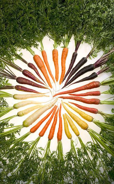 Cu frunzele de morcov se pot asezona supele si salatele