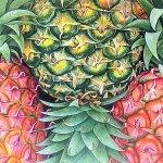 Imprimeuri cu fructe – manevra vestimentara de vara