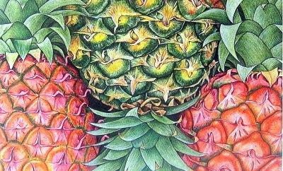 imprimeuri cu fructe