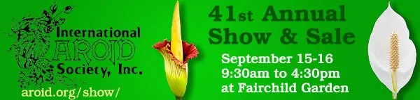 Aroid Society Show and Sale at Fairchild