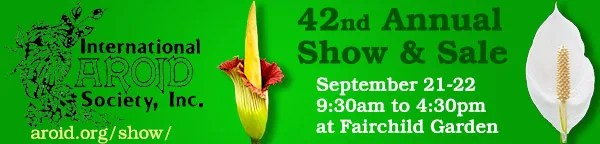 42nd Annual Aroid Show and Sale